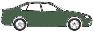 Dark Gray Fern Metallic touch up paint for 1983 Oldsmobile All Models