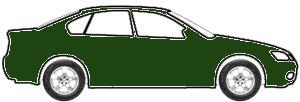 Dark Green  touch up paint for 2009 Chevrolet Kodiak