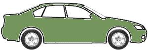 Dark Green Metallic touch up paint for 1979 GMC Truck