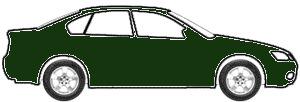 Medium Cypress Green Metallic  touch up paint for 2016 Fleetwood Motorhome