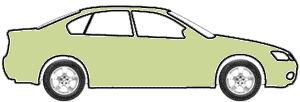 Pinehurst Green Irid. touch up paint for 1972 Oldsmobile All Models